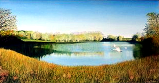 Jean Daker: 'Autumn at Rushden Lakes' (oil)