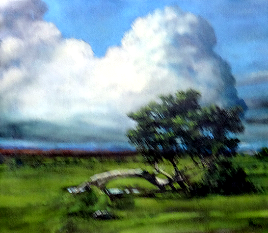 Tim Hagan: 'Fallen Tree, Dartmoor'